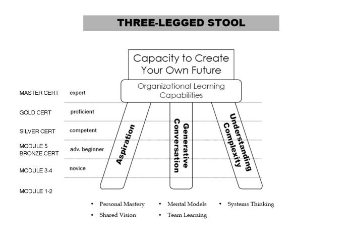 3-legged Stool Overview